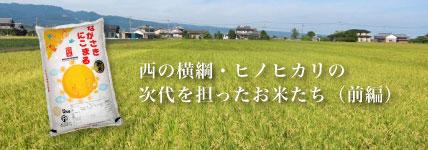 日本お米紀行のイメージ