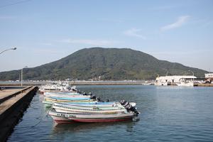 全国的に知られる糸島の鯛とカキ