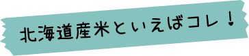 北海道産米といえばこれ