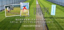 福島県の最新米事情秘話 福島県産米を襲った未曽有の災害と天のつぶ、新ブランド米に託された未来とは!?